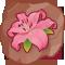 Edelweiss regenerador